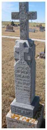 BOLAND, CLEMENT - Cedar County, Nebraska | CLEMENT BOLAND - Nebraska Gravestone Photos