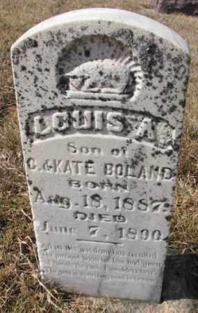 BOLAND, LOUIS A. - Cedar County, Nebraska | LOUIS A. BOLAND - Nebraska Gravestone Photos