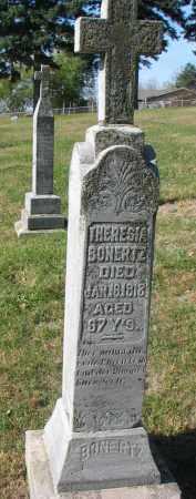 BONERTZ, THERESIA - Cedar County, Nebraska | THERESIA BONERTZ - Nebraska Gravestone Photos