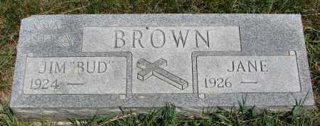 BROWN, JANE - Cedar County, Nebraska | JANE BROWN - Nebraska Gravestone Photos