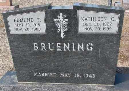 BRUENING, EDMUND F. - Cedar County, Nebraska | EDMUND F. BRUENING - Nebraska Gravestone Photos