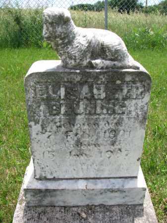 BRUNING, ELISABETH - Cedar County, Nebraska | ELISABETH BRUNING - Nebraska Gravestone Photos