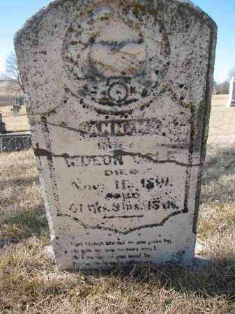 COLE, ANN W. - Cedar County, Nebraska | ANN W. COLE - Nebraska Gravestone Photos