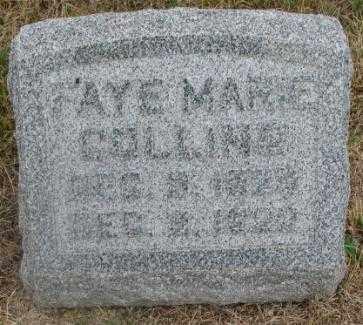 COLLING, FAYE MARIE - Cedar County, Nebraska | FAYE MARIE COLLING - Nebraska Gravestone Photos