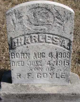COYLE, CHARLES A. - Cedar County, Nebraska   CHARLES A. COYLE - Nebraska Gravestone Photos