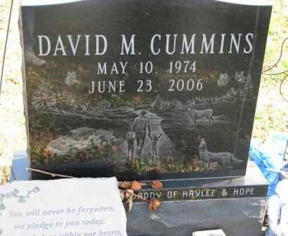 CUMMINS, DAVID M. - Cedar County, Nebraska | DAVID M. CUMMINS - Nebraska Gravestone Photos