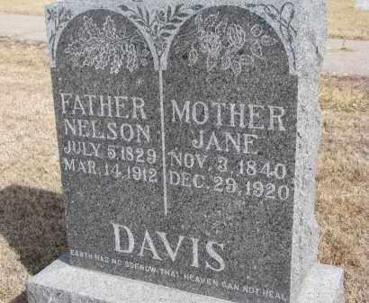 DAVIS, NELSON - Cedar County, Nebraska | NELSON DAVIS - Nebraska Gravestone Photos