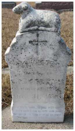 DENDINGER, SYLVESTER - Cedar County, Nebraska | SYLVESTER DENDINGER - Nebraska Gravestone Photos