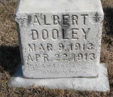 DOOLEY, ALBERT - Cedar County, Nebraska | ALBERT DOOLEY - Nebraska Gravestone Photos