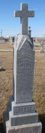 DREESEN, THEODOR - Cedar County, Nebraska | THEODOR DREESEN - Nebraska Gravestone Photos