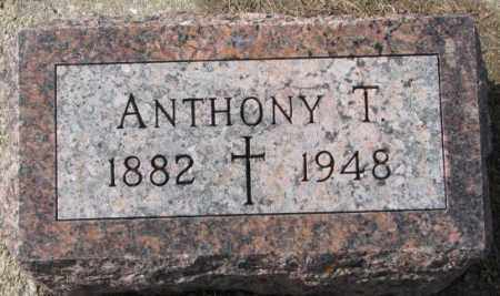 DUMAN, ANTHONY T. - Cedar County, Nebraska | ANTHONY T. DUMAN - Nebraska Gravestone Photos