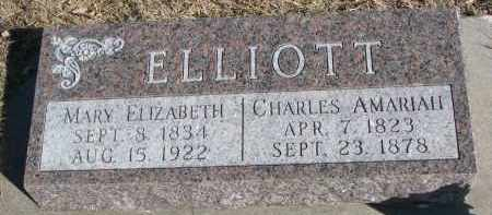 ELLIOTT, MARY ELIZABETH - Cedar County, Nebraska | MARY ELIZABETH ELLIOTT - Nebraska Gravestone Photos