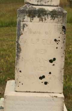 ELLIS, ELIZABETH - Cedar County, Nebraska | ELIZABETH ELLIS - Nebraska Gravestone Photos