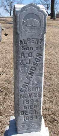 ERLANDSON, ALBERT - Cedar County, Nebraska | ALBERT ERLANDSON - Nebraska Gravestone Photos