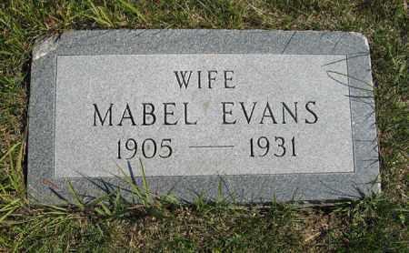 EVANS, MABEL - Cedar County, Nebraska | MABEL EVANS - Nebraska Gravestone Photos