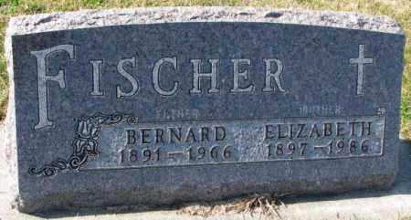 FISCHER, ELIZABETH - Cedar County, Nebraska | ELIZABETH FISCHER - Nebraska Gravestone Photos
