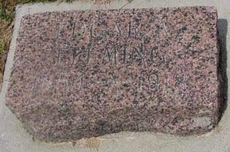 FLEMING, EDGAR A. - Cedar County, Nebraska | EDGAR A. FLEMING - Nebraska Gravestone Photos