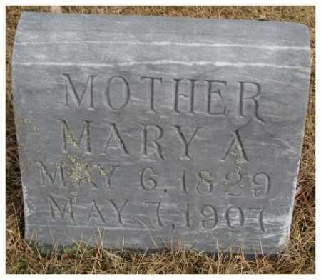 GIFFORD, MARY A. - Cedar County, Nebraska | MARY A. GIFFORD - Nebraska Gravestone Photos