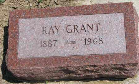 GRANT, RAY - Cedar County, Nebraska | RAY GRANT - Nebraska Gravestone Photos