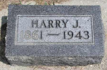 GRAU, HARRY J. - Cedar County, Nebraska | HARRY J. GRAU - Nebraska Gravestone Photos