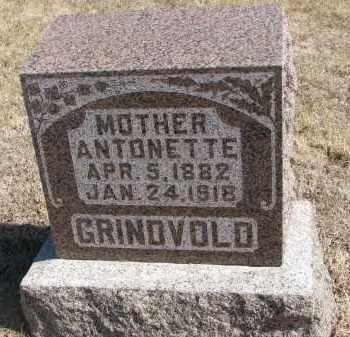 GRINDVOLD, ANTONETTE - Cedar County, Nebraska   ANTONETTE GRINDVOLD - Nebraska Gravestone Photos