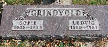 GRINDVOLD, LUDVIG - Cedar County, Nebraska | LUDVIG GRINDVOLD - Nebraska Gravestone Photos