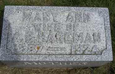 HAGEMAN, MARY ANN - Cedar County, Nebraska | MARY ANN HAGEMAN - Nebraska Gravestone Photos