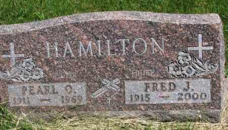 HAMILTON, FRED J. - Cedar County, Nebraska | FRED J. HAMILTON - Nebraska Gravestone Photos