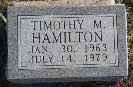 HAMILTON, TIMOTHY M. - Cedar County, Nebraska | TIMOTHY M. HAMILTON - Nebraska Gravestone Photos