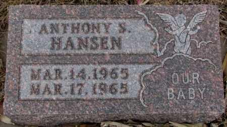 HANSEN, ANTHONY S. - Cedar County, Nebraska | ANTHONY S. HANSEN - Nebraska Gravestone Photos