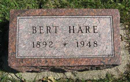 HARE, BERT - Cedar County, Nebraska | BERT HARE - Nebraska Gravestone Photos