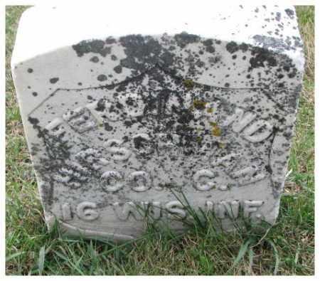 HIRSCHMAN, FERDINAND (MILITARY MARKER) - Cedar County, Nebraska | FERDINAND (MILITARY MARKER) HIRSCHMAN - Nebraska Gravestone Photos