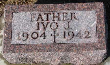 HIRSCHMAN, IVO J. - Cedar County, Nebraska | IVO J. HIRSCHMAN - Nebraska Gravestone Photos