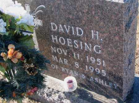 HOESING, DAVID H. - Cedar County, Nebraska | DAVID H. HOESING - Nebraska Gravestone Photos