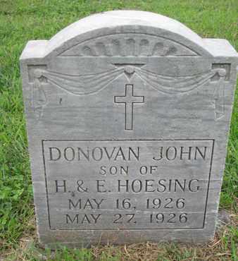 HOESING, DONOVAN JOHN - Cedar County, Nebraska | DONOVAN JOHN HOESING - Nebraska Gravestone Photos