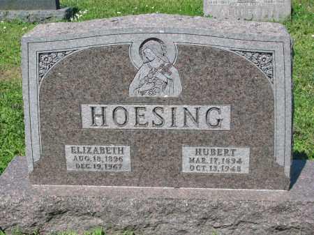 HOESING, HUBERT - Cedar County, Nebraska | HUBERT HOESING - Nebraska Gravestone Photos