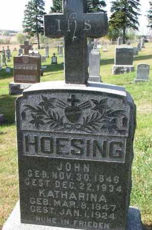 HOESING, KATHARINA - Cedar County, Nebraska | KATHARINA HOESING - Nebraska Gravestone Photos