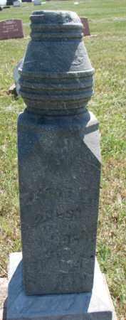 HOLST, JACOB F. - Cedar County, Nebraska | JACOB F. HOLST - Nebraska Gravestone Photos