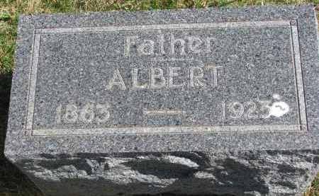 JELINEK, ALBERT - Cedar County, Nebraska | ALBERT JELINEK - Nebraska Gravestone Photos