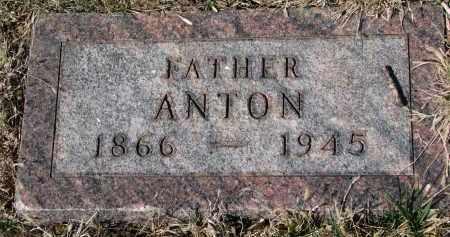JENSEN, ANTON - Cedar County, Nebraska | ANTON JENSEN - Nebraska Gravestone Photos