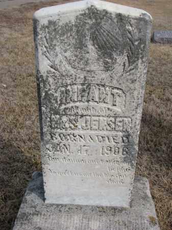 JENSEN, INFANT DAUGHTER - Cedar County, Nebraska | INFANT DAUGHTER JENSEN - Nebraska Gravestone Photos
