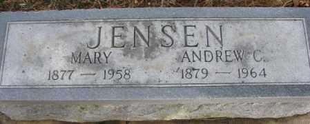 JENSEN, ANDREW - Cedar County, Nebraska | ANDREW JENSEN - Nebraska Gravestone Photos