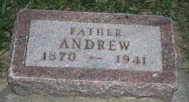 JOHNSON, ANDREW - Cedar County, Nebraska   ANDREW JOHNSON - Nebraska Gravestone Photos