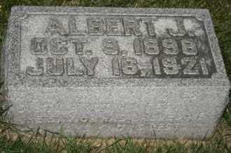 JOHNSON, ALBERT J - Cedar County, Nebraska | ALBERT J JOHNSON - Nebraska Gravestone Photos