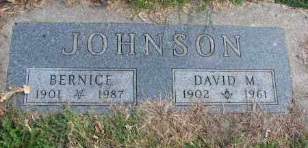 JOHNSON, BERNICE - Cedar County, Nebraska | BERNICE JOHNSON - Nebraska Gravestone Photos