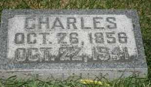 JOHNSON, CHARLES - Cedar County, Nebraska | CHARLES JOHNSON - Nebraska Gravestone Photos