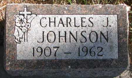 JOHNSON, CHARLES J. - Cedar County, Nebraska | CHARLES J. JOHNSON - Nebraska Gravestone Photos