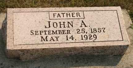 JOHNSON, JOHN A - Cedar County, Nebraska | JOHN A JOHNSON - Nebraska Gravestone Photos