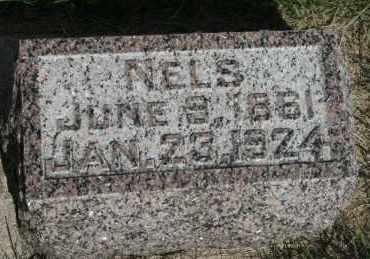 JOHNSON, NELS - Cedar County, Nebraska   NELS JOHNSON - Nebraska Gravestone Photos