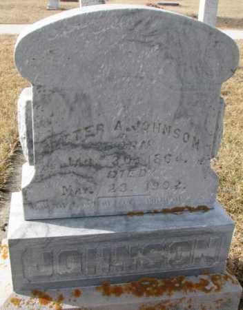 JOHNSON, PETER A. - Cedar County, Nebraska | PETER A. JOHNSON - Nebraska Gravestone Photos